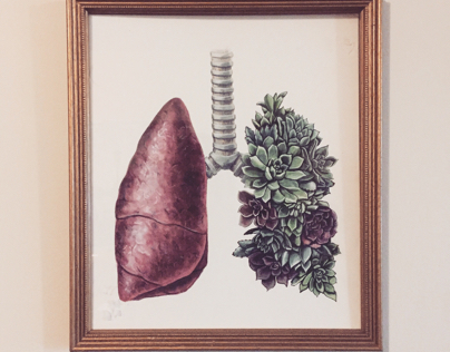 Succulent lungs
