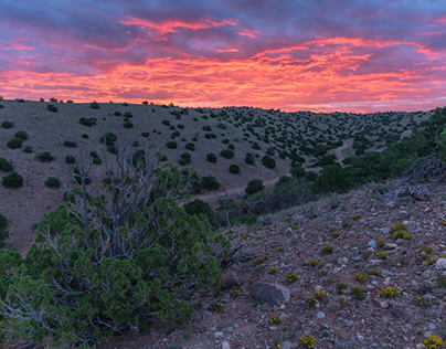 Mesa Top Sunrise