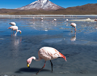 The Uyuni tour, Bolivia (Part 4)
