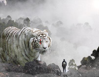 Composição tigre gigante
