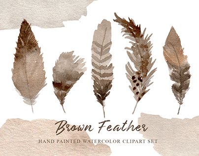 Brown Feather Clipart Set