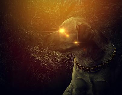 Jungle Dog