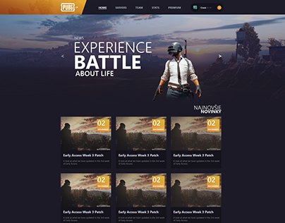 PUBG - PlayerUnknown's Battlegrounds Webdesign