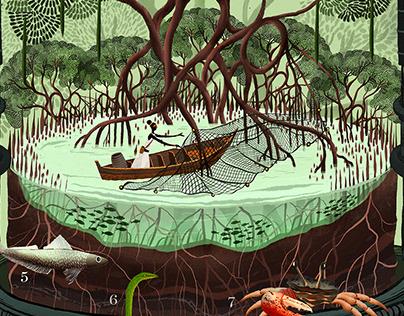 Mumbai's Incredible Biodiversity - Mangroves