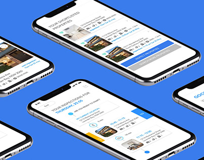 App UX/UI: Inspection Planner