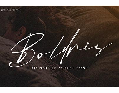 FREE | Boldris Signature Script Font
