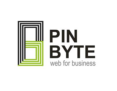 Pin Byte