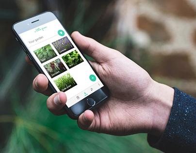 a little green – App design case study