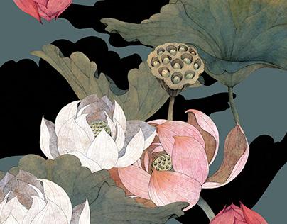 """""""Lotus Land"""""""