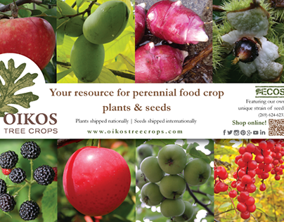 Ad: Oikos Tree Crops Perennial Farm