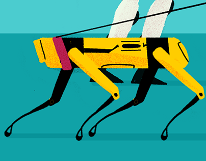 Boston Dynamics Pet