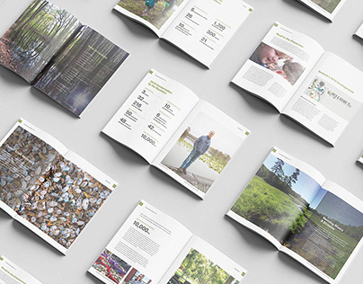 Designs for Environmental not-for-profit