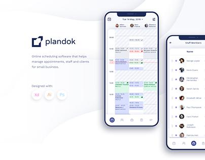 """""""Plandok"""" software design"""