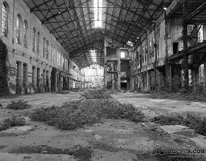 Sugar factory Eridania in Forlì