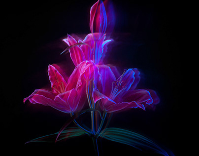Flower in motion