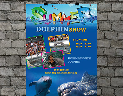 Poster - 'Dolphin Show'