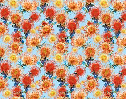Leucospermum flowers pattern