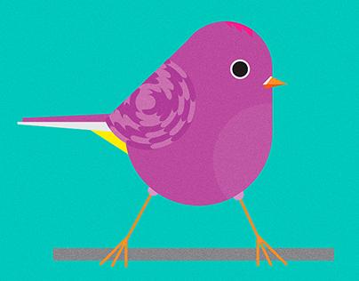 Optimum Birds