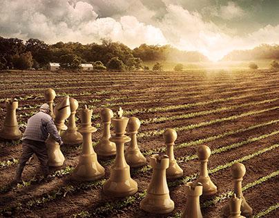 Plantação Estratégica