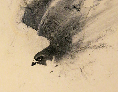 Birds in charcoal