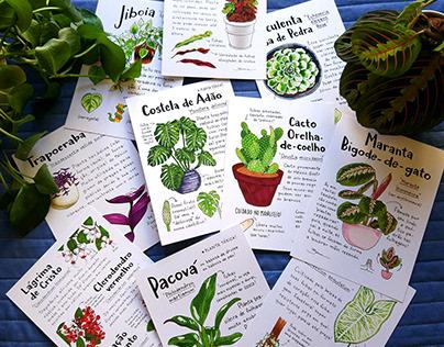 Glossário ilustrado de plantas
