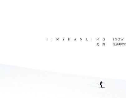 龙湖地产滑雪项目提报logo