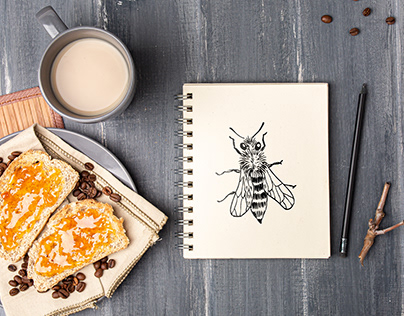 Bee sketch. Illustration and pattern for a honey shop