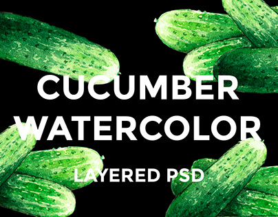 Cucumber watercolor illustrations