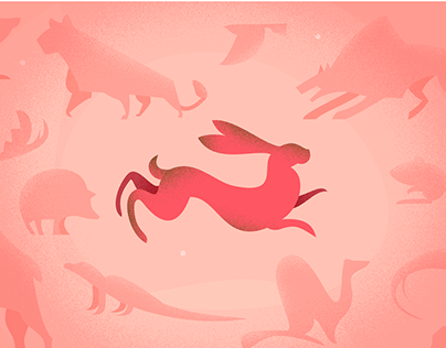 Mini illustrated web-serie for the MNHN