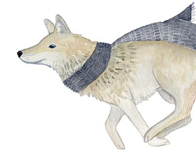 Skittish Coyote Branding Illustration