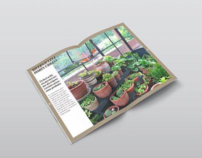 Llibret Botània Jardineria
