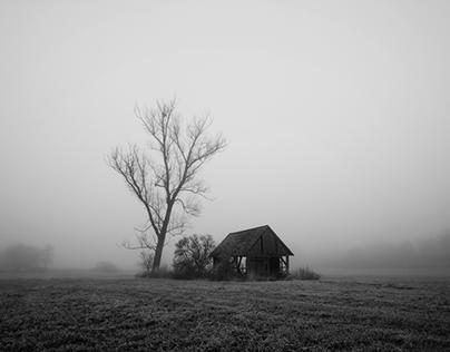 Silent foggy days