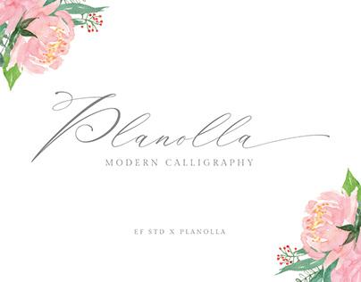 Planolla | Modern Calligraphy