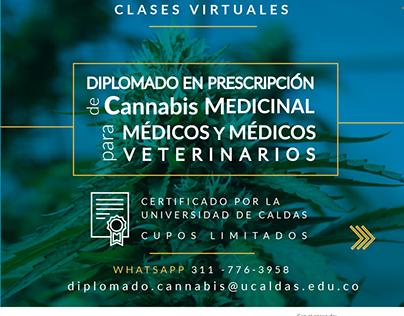 Diplomado en prescripción de cannabis medicinal