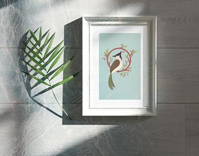 Ilustração Pássaro Bulbul