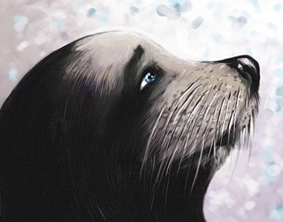 The Adventures of the sea lion