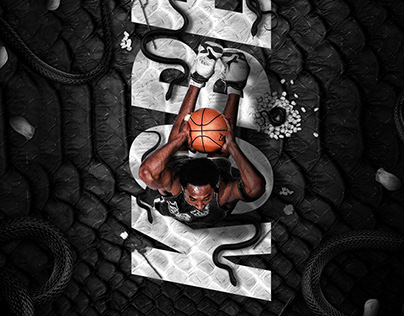 NBA Aerial Series (Personal Project)