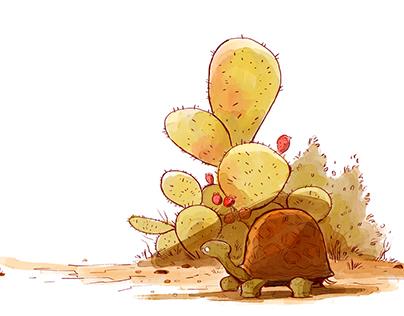 Shy Tortoise