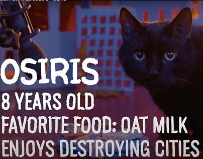 Cat ASMR Cityscape Animation