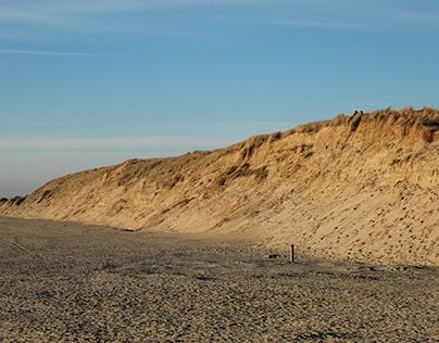 Texel dune