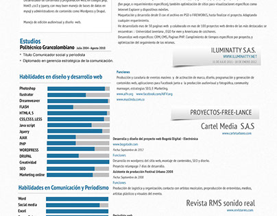 Resume Design 2013