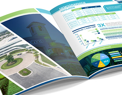 Lee County Infographic Brochure