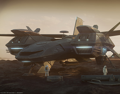 Birthday ship design 2020