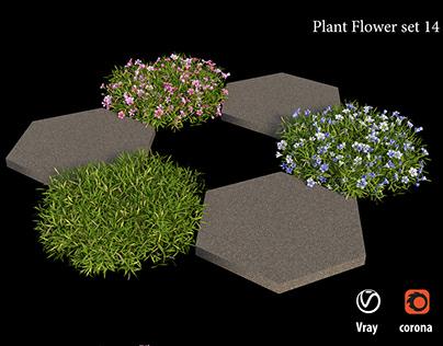 Plant flower set 14