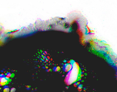 Distortion Experiments