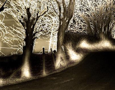 Dark Road (Cefngorwydd)