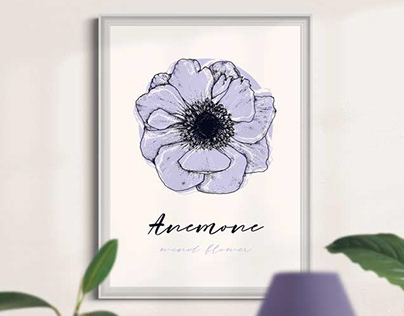 Anemone - wind flower. A poster.