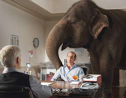 Viagra 'The elephant in the room'