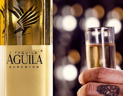 águila : visual identity