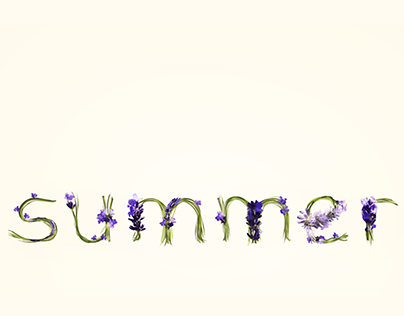 Summer to Fall